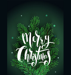 greeting card with christmas tree branches vector image vector image