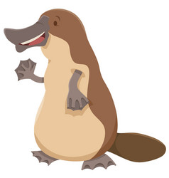 Platypus animal character vector