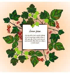 Frame with garden berries vector image vector image
