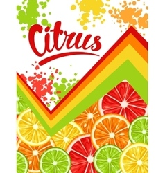 Poster with citrus fruits slices mix of lemon vector