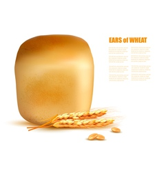 A loaf of bread with grain vector