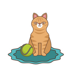 Cute cat with tennis ball vector