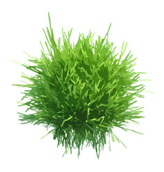 Fresh green grass ball vector