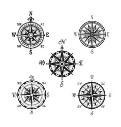 marine or nautical compass navigation icons vector image vector image
