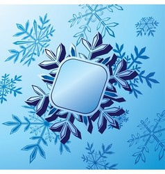 Snowflake banner vector image vector image