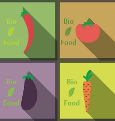 Flat design modern of healthy and biological food vector