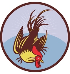Rooster cockerel cock chicken vector