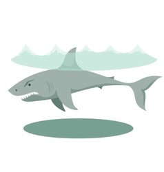 A large gray cartoon shark with vector