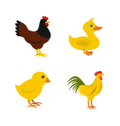 domestic bird icon set flat style vector image