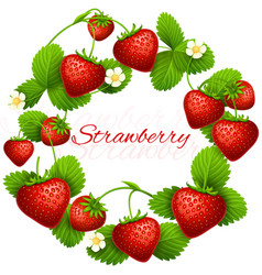 juicy strawberry frame wreath health vector image vector image
