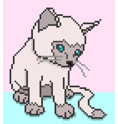 pixel kitty vector image vector image