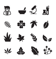 Silhouette herb icons set vector