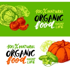 Eco food menu banners hand drawn sketch vegetables vector