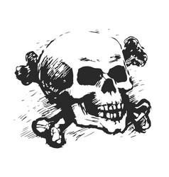 human skull and cross bones vector image vector image