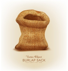 object- a burlap sack vector image vector image