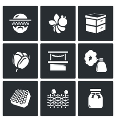 Set of Apiary Icons Beekeeper Bee Hive vector image vector image