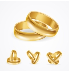 Wedding gold ring set vector