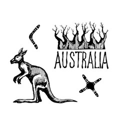 australia symbols and signs vector image