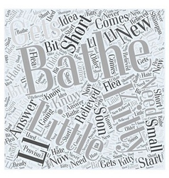Do i need to bathe my new kitty word cloud concept vector