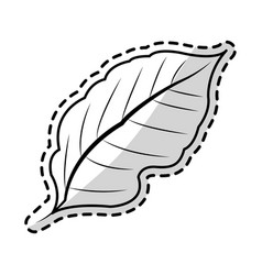 leaf plant icon image vector image