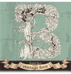 Magic grunge forest hand drawn by vintage font - b vector