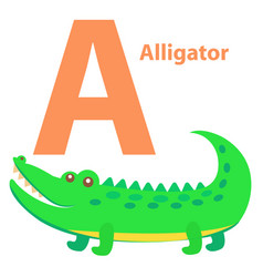 alphabet for children a letter alligator cartoon vector image vector image