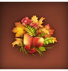 Autumn harvest background vector