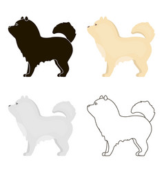 Chow-chow icon in cartoon style for web vector