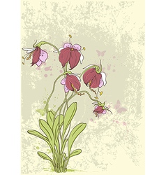 orchids red vector image vector image