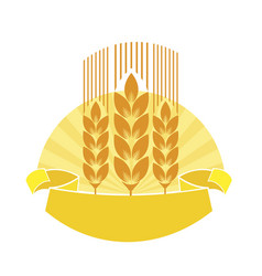 ripe rye vector image