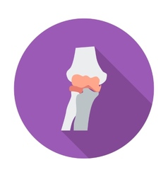 Knee-joint single flat icon vector