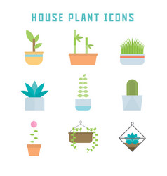 House plant icons vector