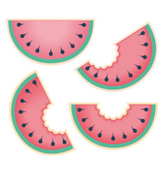 Fresh and juicy whole watermelons and slices vector