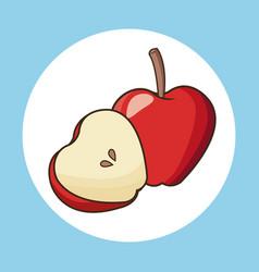 apple fruit nutrition diet sport vector image