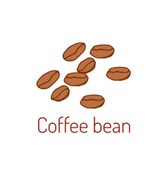 coffee beans hand drawn vector image vector image