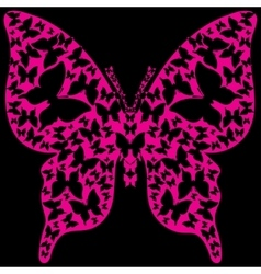 Stencil symmetry outline violet butterfly from vector