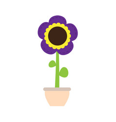 cute sunflower on a pot vector image