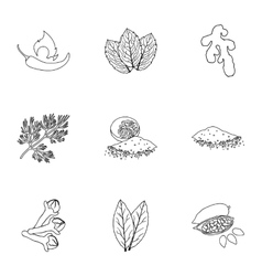 Herb and spices set icons in outline style big vector