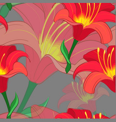 seamless lily pattern vector image vector image