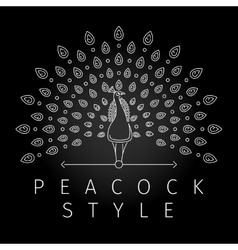 Thin line peacock logo vector