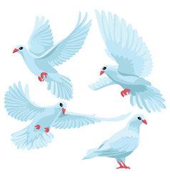 White doves on white background vector image vector image