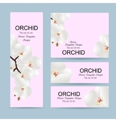 Flowers invitation template with flowers orchids vector image
