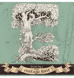 Magic grunge forest hand drawn by vintage font -E vector image vector image