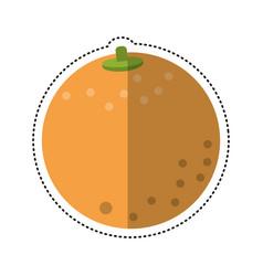 Cartoon orange nutrition healthy diet vector