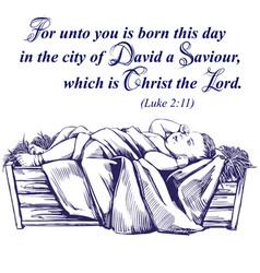 christmas story christmas night baby jesus in vector image
