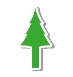 tree pine natural isolated icon vector image
