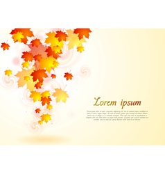 Elegant autumn background vector image vector image