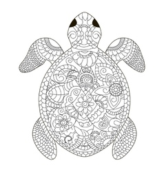 Sea turtle coloring for adults vector