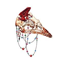 Bird Skull4 vector image vector image