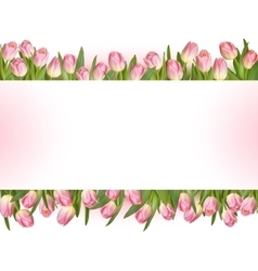 Tulips design template or background EPS 10 vector image vector image